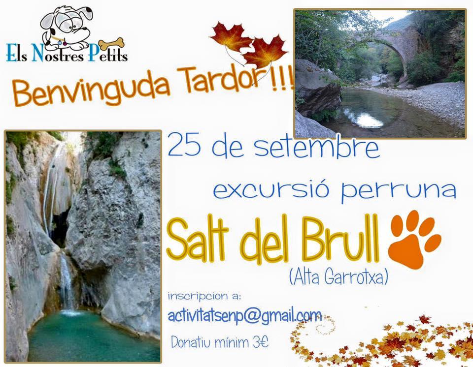 Salt del Brull'16