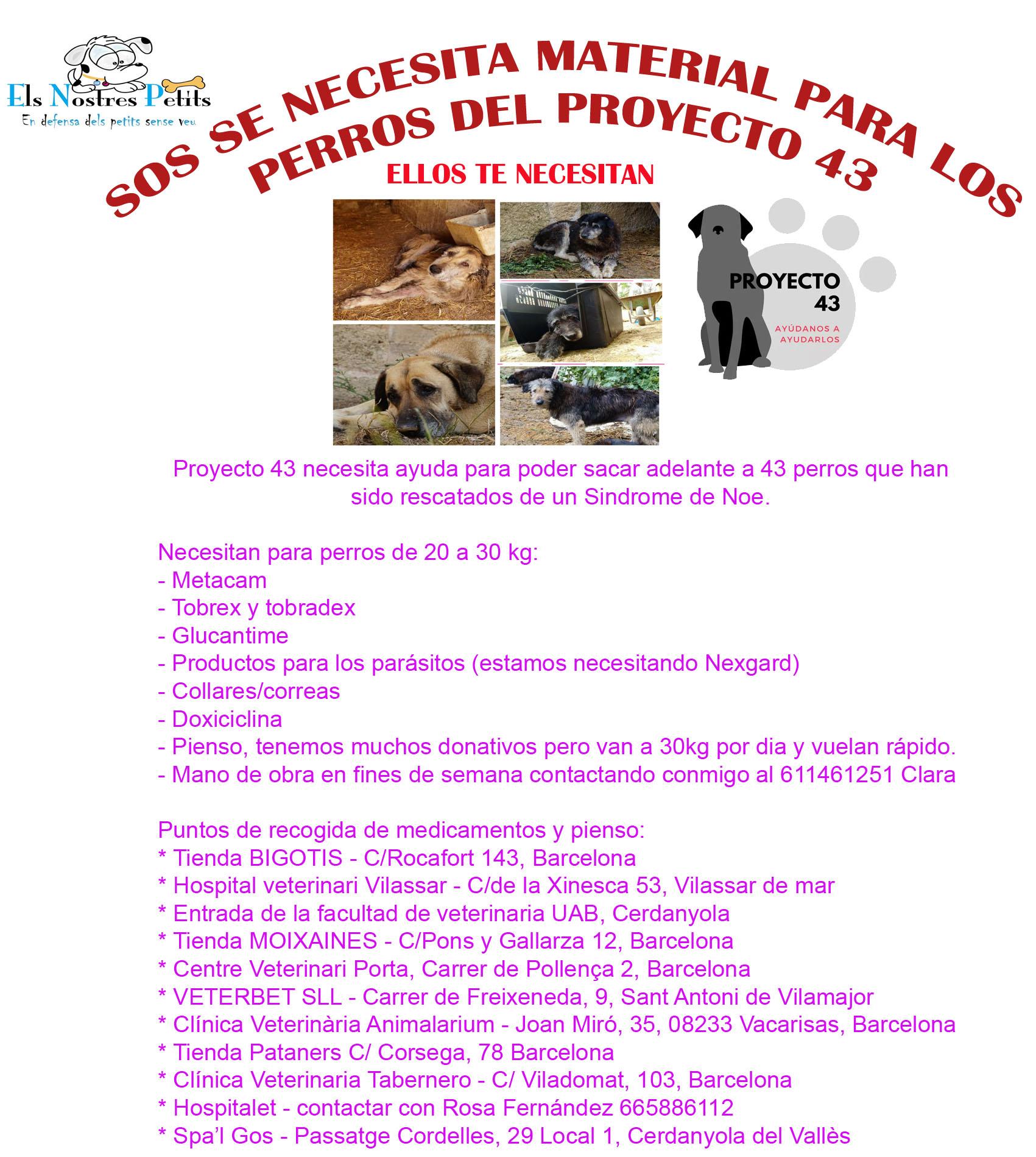 cartel proyecto43