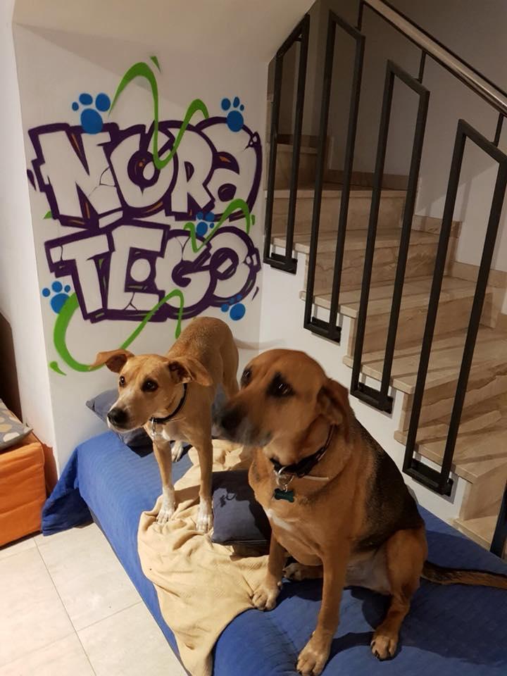 Nora y Tego